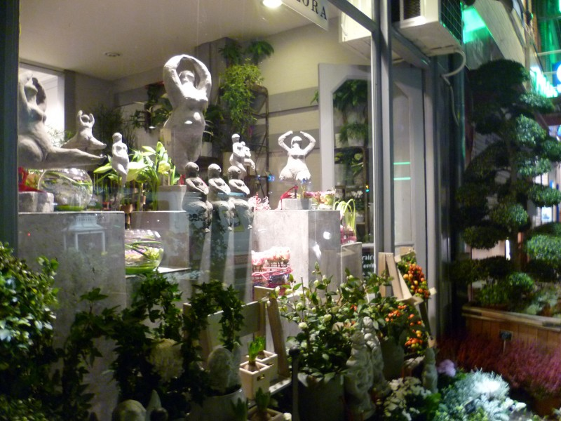Vitrine Ambiance Jardin de Léa
